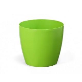 МАГНОЛИЯ Зелёный -выберите размер