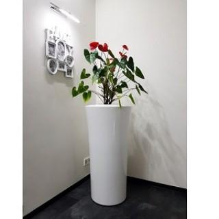 ПАРГА Белый  60*120 см.  Остаток -3 шт.