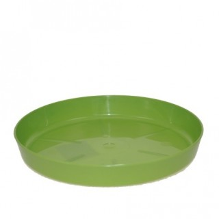 Поддон Зелёный