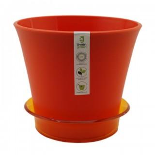 ЛОТОС  Оранжевый с поддоном  Продажа коробкой 14 шт.
