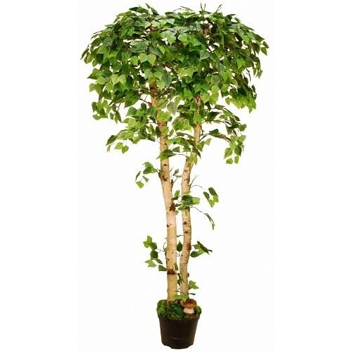 Береза Искусственное дерево в кашпо купить в Краснодаре