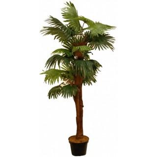 Искусственная пальма ВАШИНГТОНИЯ