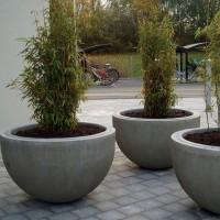 Большие горшки для крупных растений