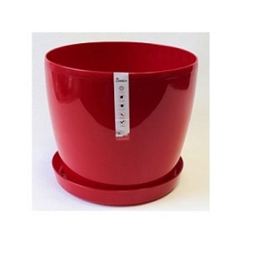 Магнолия Красный горшок с поддоном купить в Краснодаре