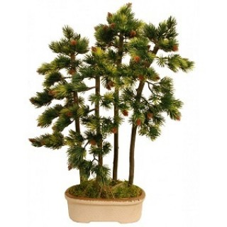 Искусственное растение Бонсай Сосна