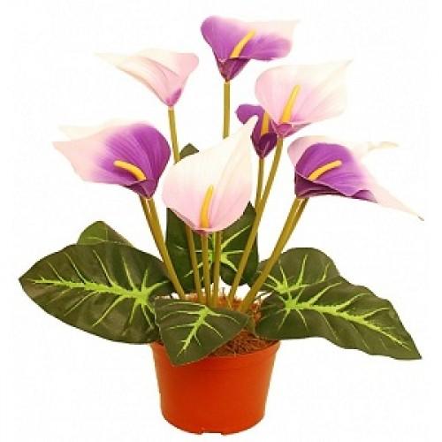 Калла Искусственные цветы купить в Краснодаре