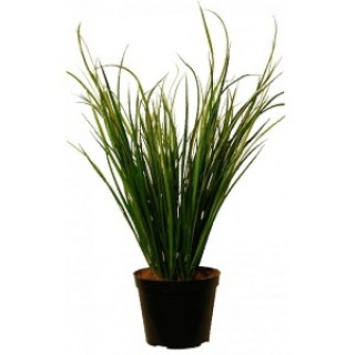 Искусственное растение Осока в кашпо