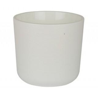 ЛИОН  Белый с вкладкой -выберите размер  Продажа коробкой