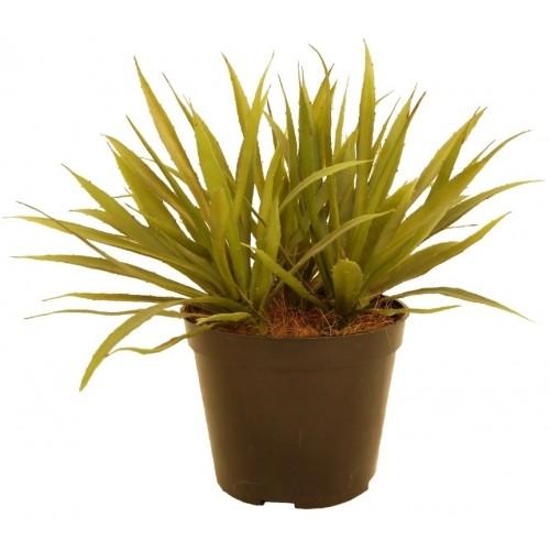 Агава Искусственное растение в кашпо купить в Краснодаре